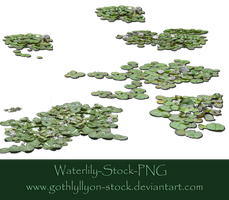 Waterlily-Stock-by-GothLyllyOn-Stock by GothLyllyOn-Sotck