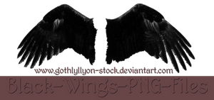 Black Wings-by-GothLyllyOn-Stock