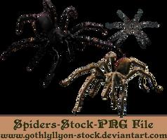 Spiders-Stock-by-GothLyllyOn-Stock by GothLyllyOn-Sotck