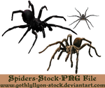 Spiders-Stock-by-GothLyllyOn-Stock