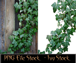 PNG-File-Ivy-Stock-by-GothLyllyOn-Stock