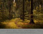 Autumn Forest-by-GothLyllyOn-Stock-MMXVI