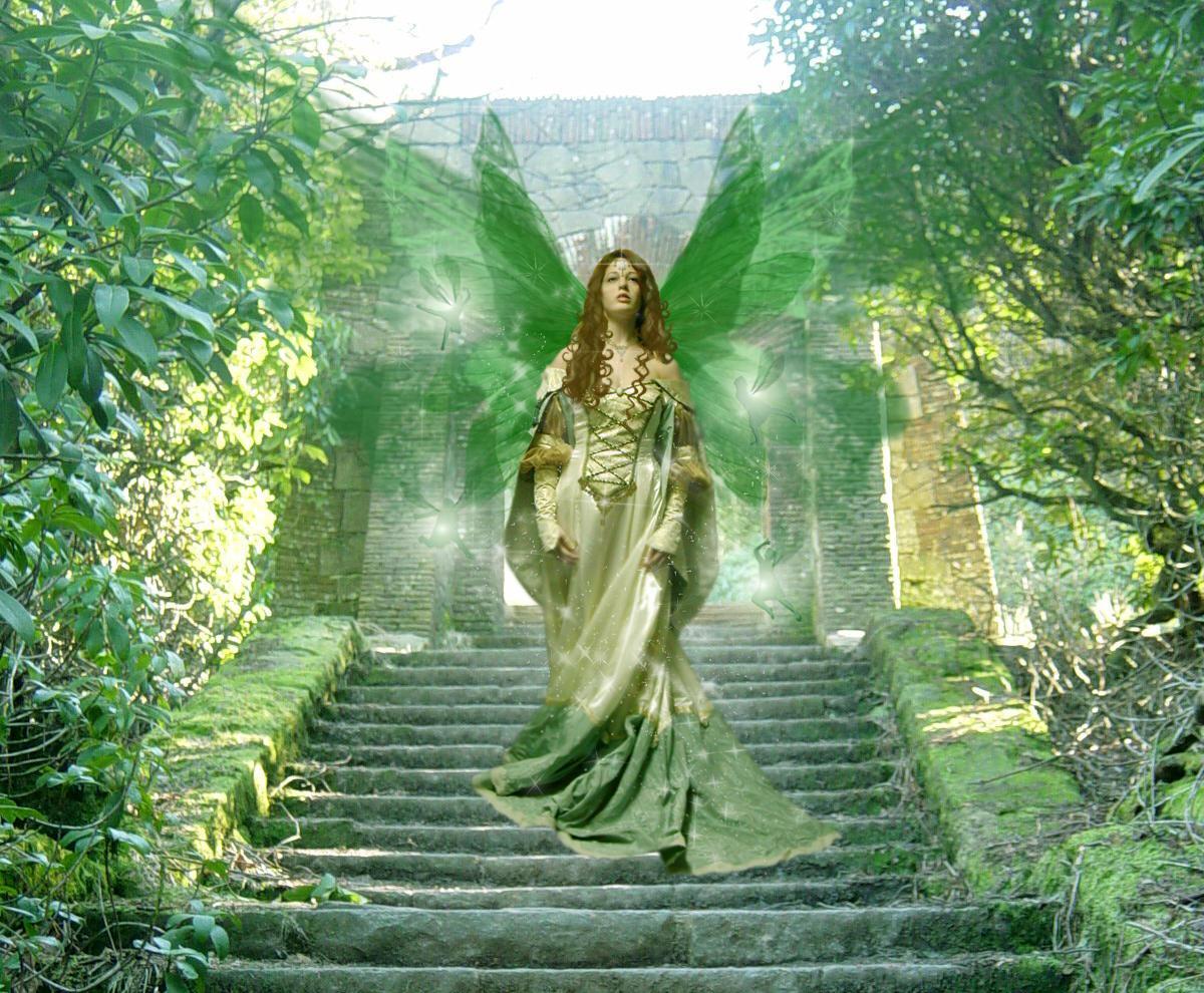 http://fc01.deviantart.com/fs11/i/2006/188/1/e/The_Fairy_Queen_by_angelusmusicus.jpg