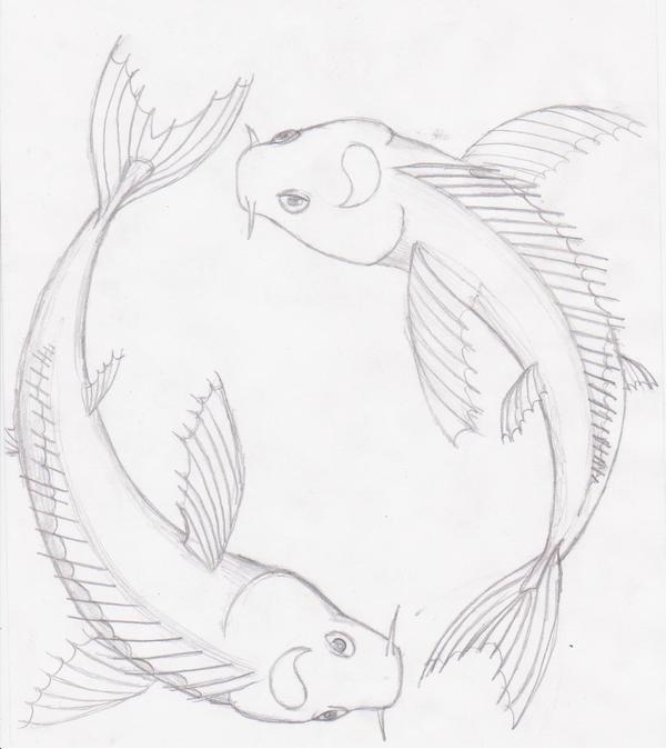 Koi Sketch By Sergeantcupcake On Deviantart