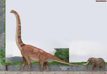 Brachiosaurus Size by SameerPrehistorica