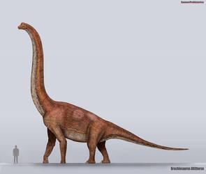 Brachiosaurus Size