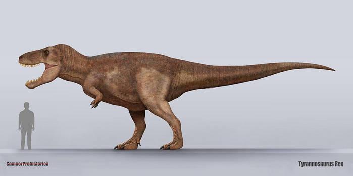 Tyrannosaurus Rex size