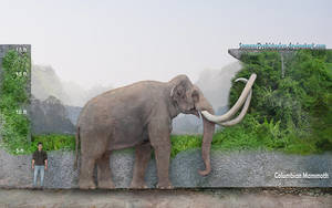 Columbian Mammoth by SameerPrehistorica