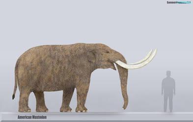 American Mastodon Size