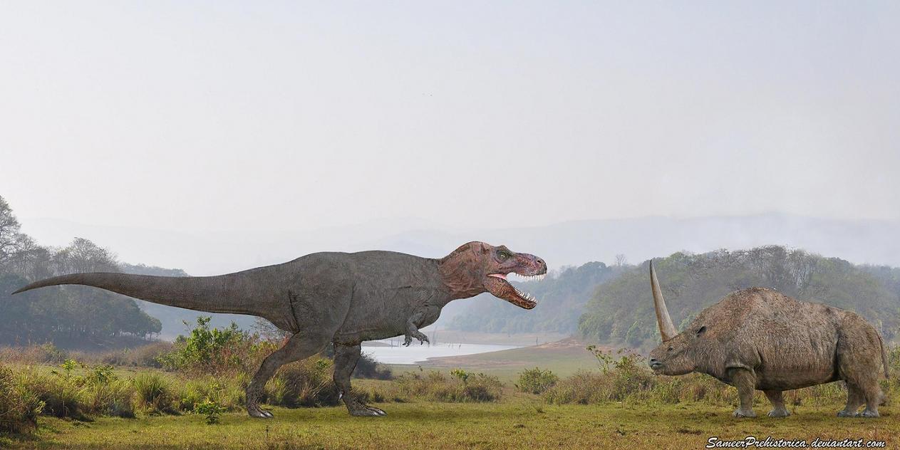 Tyrannosaurus Rex vs Elasmotherium by SameerPrehistorica ...