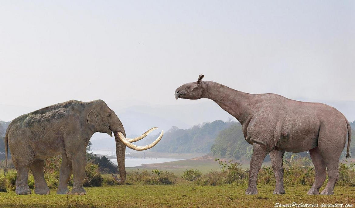 Brontosaurus size compared too many fish dating site 3