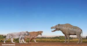 Smilodon Populator / American Lion vs Daeodon