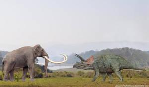 Columbian Mammoth vs Triceratops by SameerPrehistorica