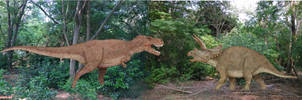 Tyrannosaurus Rex vs Triceratops by SameerPrehistorica