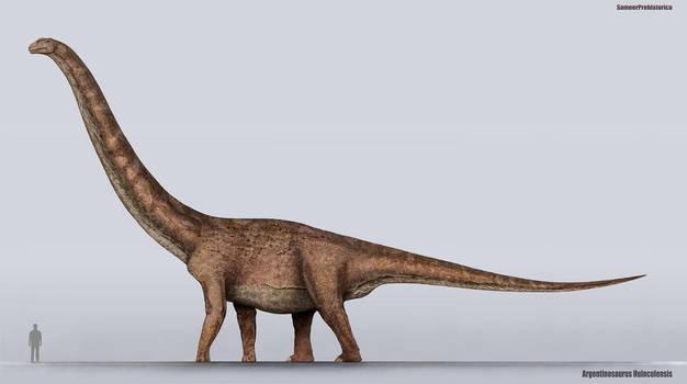 Argentinosaurus Size