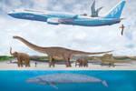 Blue Whale Size Comparison 2