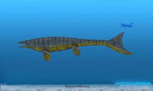 Mosasaurus by SameerPrehistorica