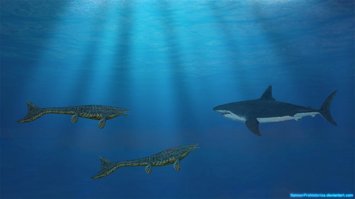 Mosasaurus vs Megalodon by SameerPrehistorica on DeviantArt