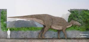 Shantungosaurus Size