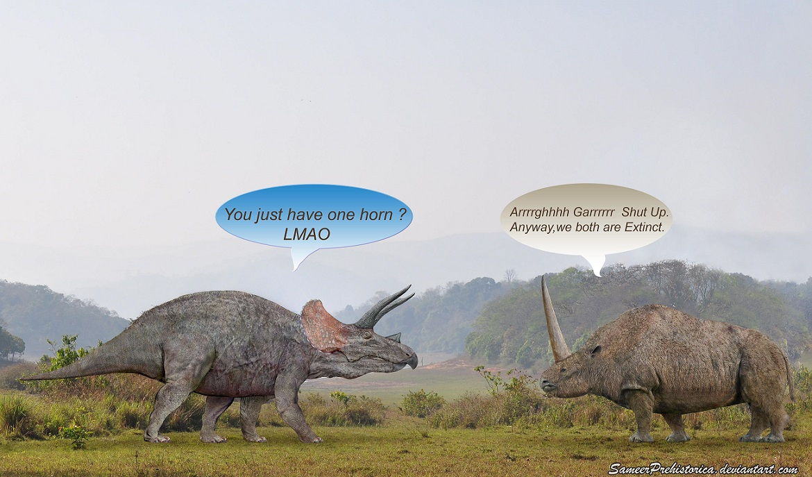 Triceratops And Elasmotherium Confrontation | Dinosaur Home