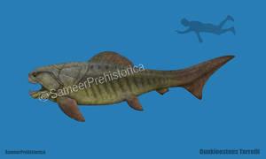 Dunkleosteus Size