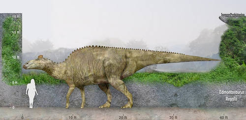 Edmontosaurus by SameerPrehistorica
