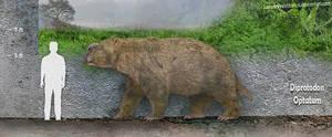 Diprotodon Size