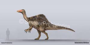 Deinocheirus Size