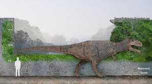 Mapusaurus Size