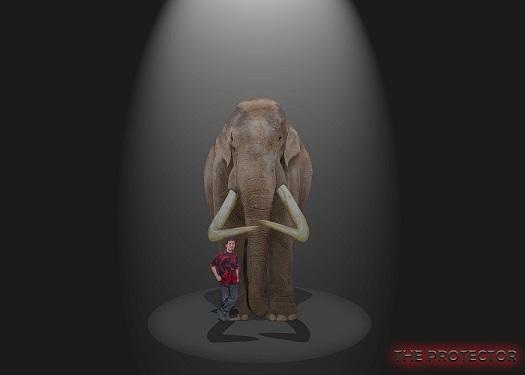 SameerPrehistorica's Profile Picture