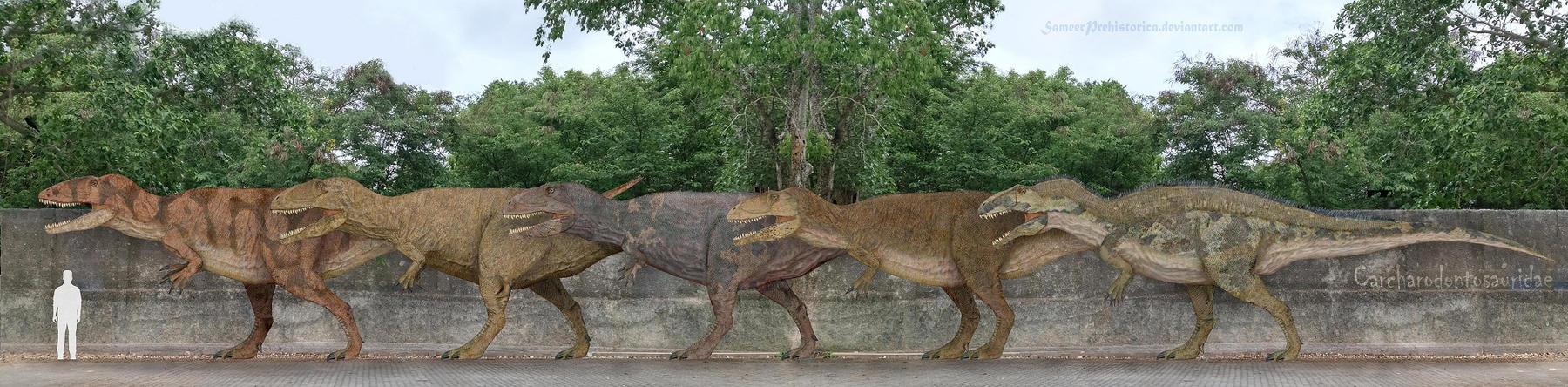 Carcharodontosauridae by SameerPrehistorica