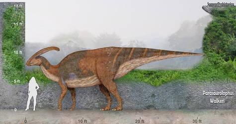 Parasaurolophus by SameerPrehistorica