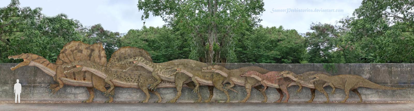 Spinosauridae by SameerPrehistorica