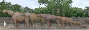 Paraceratheriidae by SameerPrehistorica