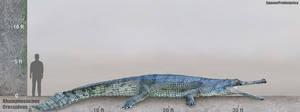 Rhamphosuchus Size