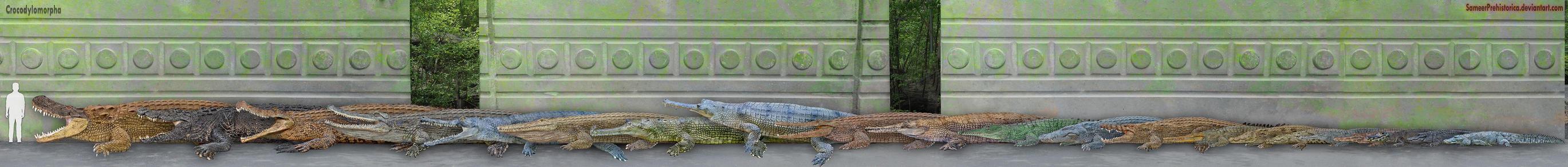Crocodylomorpha by SameerPrehistorica