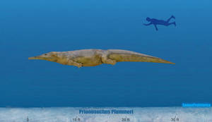 Prionosuchus Size by SameerPrehistorica