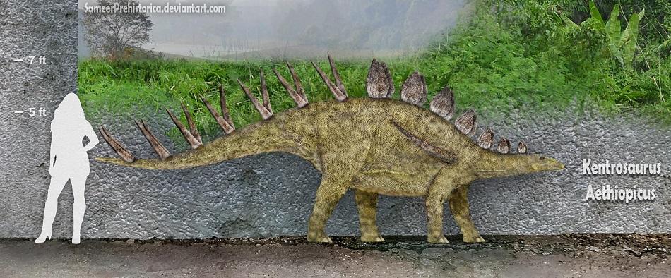 Kentrosaurus by SameerPrehistorica