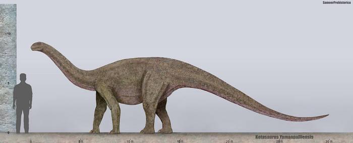 Kotasaurus Size by SameerPrehistorica