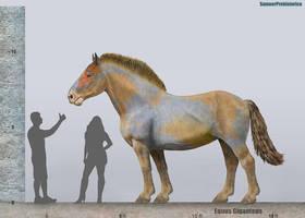 Equus Giganteus Size by SameerPrehistorica