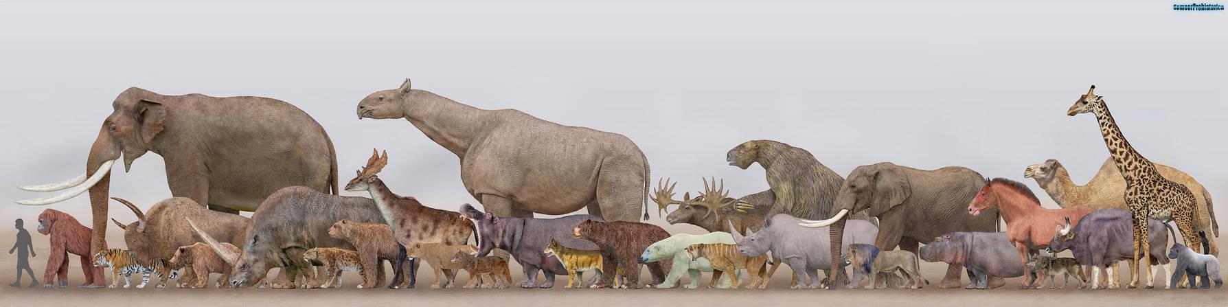 Megafauna - Mammals