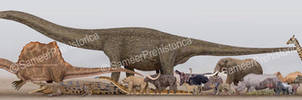 African Megafauna