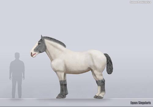 Equus Singularis Size