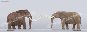 Mammoth vs Mastodon