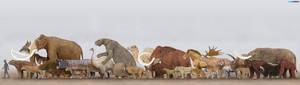 Pleistocene Megafauna