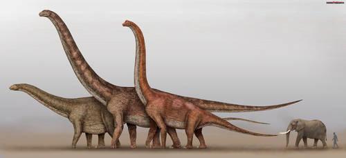 Dinosaurs and elephant