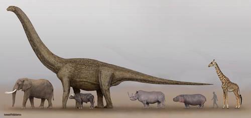 Dinosaurs and mammals