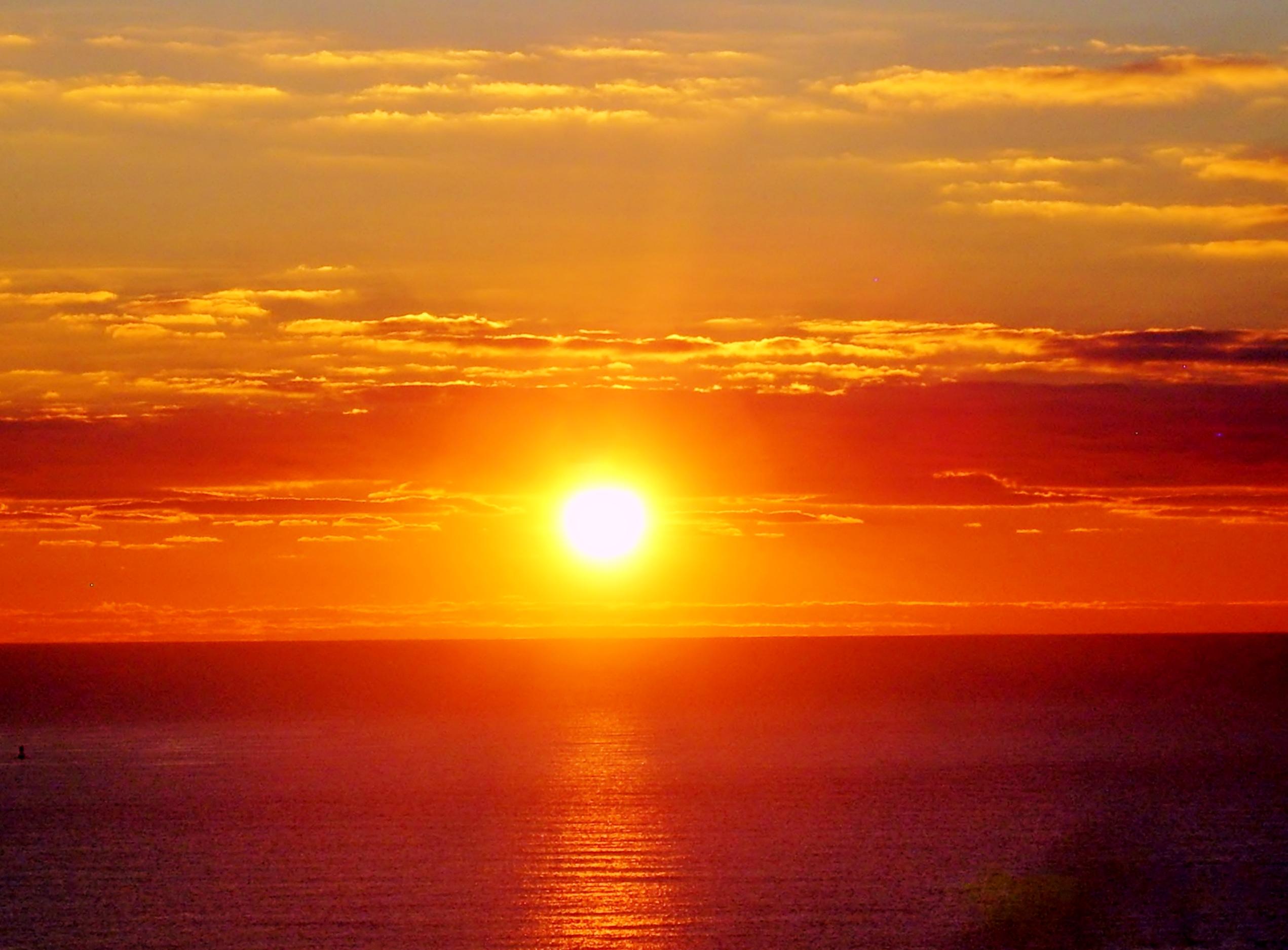 sunrise hospi sunrise hospital - HD2542×1874