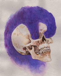 violet - watercolour painting by danb13