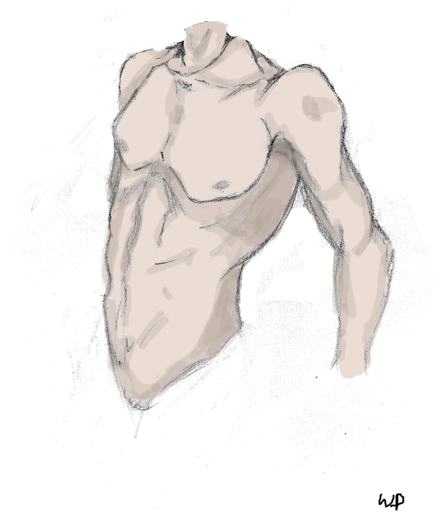 how to draw a human body male